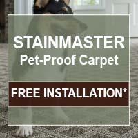 Carpet on sale this month at Fine Floorz!